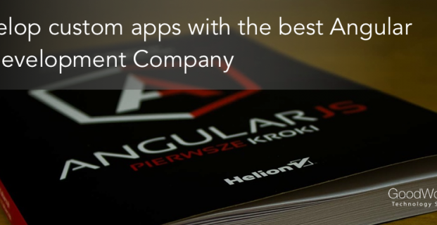 Best AngularJS Development Company India