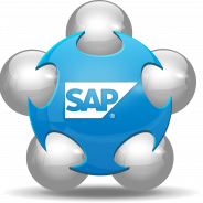 5 SAP Softwares Every Industry Should Be Utilizing