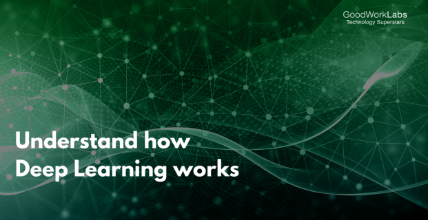 Understand How Deep Learning Works