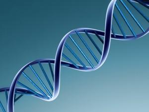 DNA of GoodWorkLabs