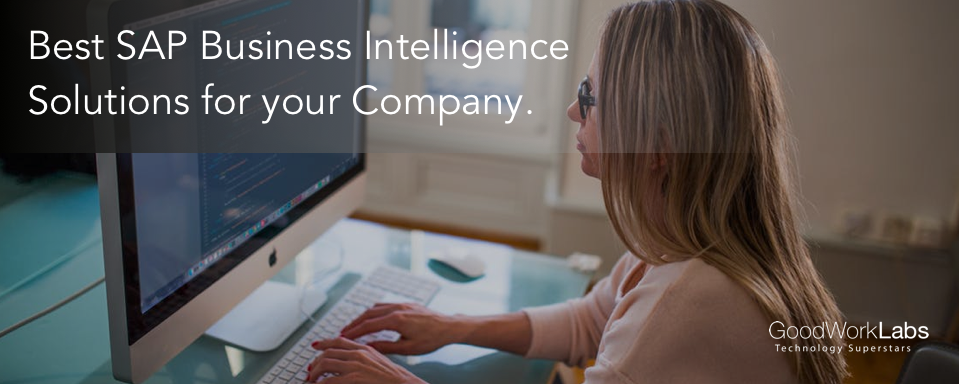 SAP business intelligence software